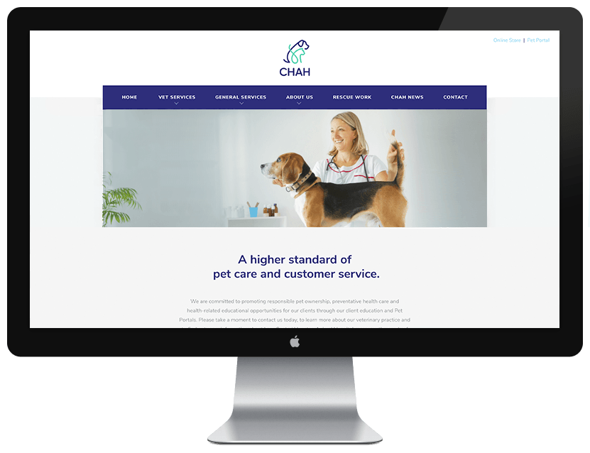 CHAH Website Design Example